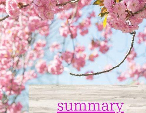 summry